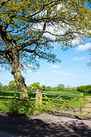 Countryside view over gate in Cheshire UK