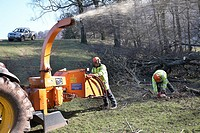 Workmen Shredding trees which have fallen during a storm in the countryside in South Wales, UK