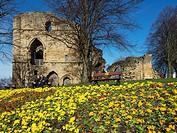 The Kings Tower Ruined Keep at Knaresborough Castle in Spring Knaresborough North Yorkshire England.