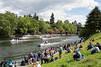 Seattle, Washington: Spectators gathered on the shore of West Montlake Park at the Windermere Cup Crew Race during Opening Day of Boating Season.