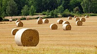 Czech Republic, Southern Bohemia - Field with Bales of Hay.