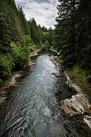 Cowichan River provincial park nature scenery, Vancouver Island, BC, Canada.
