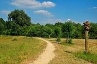 Path going in field. Photo taken in Heerlen (province of Limburg in the Netherlands).