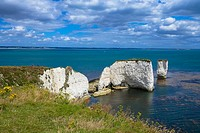 coast with Old Harry chalk cliffs at jurassic coast, Dorset, England