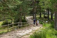 Parque natural de Sierra de Urbión y Laguna Negra. Soria province, Castile-Leon, Spain
