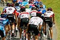 Rad Schweizermeisterschaft 2005