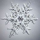 Microscopy, snowflake