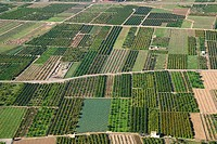 Aerial view of irrigated region. Valencia province, Comunidad Valenciana, Spain