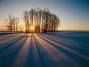 Winter sunset. Suwalki region, Northern Poland