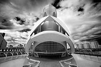 Palacio de las Artes Reina Sofía, City of Arts and Sciences by S. Calatrava. Valencia. Comunidad Valenciana, Spain