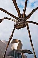 Guggenheim Museum (building by Frank O. Gehry), Bilbao. Biscay, Euskadi, Spain