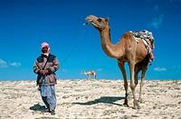 Desert. Khareejat Nasir. Qatar.