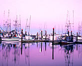 Commercial fishing fleet at dawn, Charleston boat basinSouthern Oregon coast, USA
