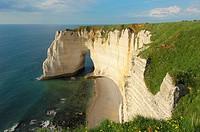 Falaise near Étretat  Côte d´Albatre  Haute-Normandie  Normandy  France