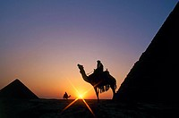 Pyramids of Giza near Cairo, Egypt (March 2007)