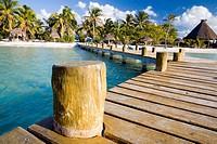 Isla Contoy, Cancún, Yucatán. México.