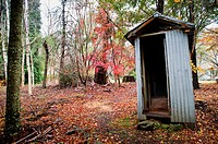 Outhouse into the forest, Mount Wilson, Blue Mountains. New South Wales, Australia
