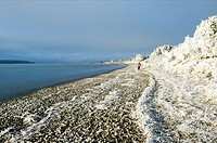 Walkers on frozen beach,Findhorn on the Moray Firth, Scotland