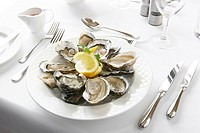 Plate of oysters served in a restaurant