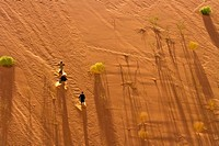 People running down a red dune in the Dead Vlei in Namibia, Southern Africa