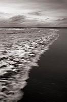 Incoming wave on the beach at Westward Ho! on the North Devon coast, England, United Kingdom