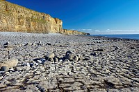 Rocky Beach at Llantwit Major, the Glamorgan Heritage Coast, Glamorgan, South Wales, UK.