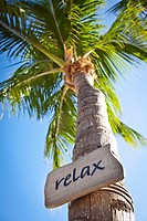 Relax sign on coconut palms along the beach in Key West, Florida