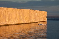 glacier Brasvellbreen and ice floes in sunset light, Nordaustlandet, Svalbard