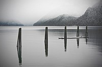 Pier pylons at the old Alaska Pulp Corporation site in Sitka, Alaska  In 1959, the Alaska Pulp Corporation pulp mill began producing wood fiber from t...