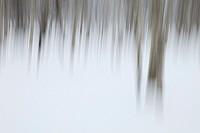 Snowy landscape, Hokkaido, Japan
