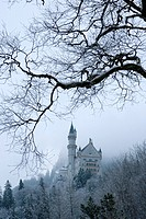 Neuschwanstein Castle, Schloss Neuschwanstein, from Hohenschwangau village, Schwangau, Ostallgau, Bavaria, Germany, Winter.