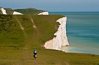 Cyclist on Chalk cliffs of the Seven Sisters, South Dawns Way, Sussex, England, UK