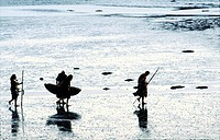 Neolithic prehistoric cave men walking on mudflats seashore carrying skin boat coracle curragh and spears