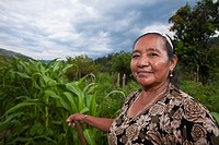 Guatemala, Huehuetenango, San Gaspar Ixchil, Mayan Woman planting