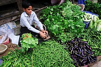 Young boy selling vegetable at the market, New Delhi, India