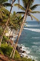 beach and coast near Mirissa, Sri Lanka