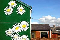 Daisy flowers painted on the wall of an end of terrace house, Aberystwyth, Wales