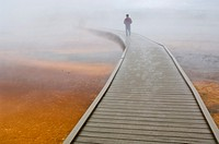 Tourist on boardwalk in steam over the fragile ground at the Grand Prismatic Spring, Midway Geyser Basin, Yellowstone National Park, Wyoming