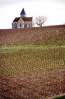 Church of the french village of Prehy, lost in the vineyards and famous for its wine of Chablis, nice view and cliché of Burgundy, with special atmosp...