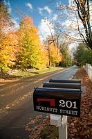 Post Boxes in a fall scene, Wilton, CT, USA