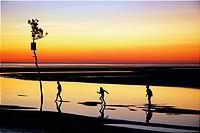 Summer Memories, Cape Cod