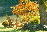 Adirondack chair sits beside lake with mist rising off water in morning light of fall with orange foliage on Sassafras tree, Missouri USA