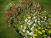 Tong shaped flowerbed
