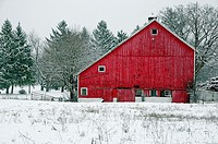 Red Barn during snowstorm in Barrington Hills, Illinois, USA