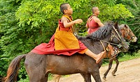 monk and novice are riding horse going to collecting alms offerings , Wat Tam Pa Ar-Cha Thong, Chiangrai, North of Thailand