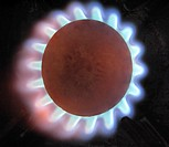 Gas Flame on Cooker