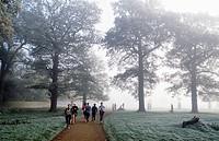 Winter in Richmond Park London Uk