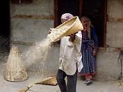 Man winnowing cereal in his yard in Vashist, Himachal Pradesh, India