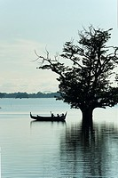 Boat by flooded tree near U Bein bridge.