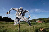 Scarecrow decorated with beer cans on a windy day in Sweden.